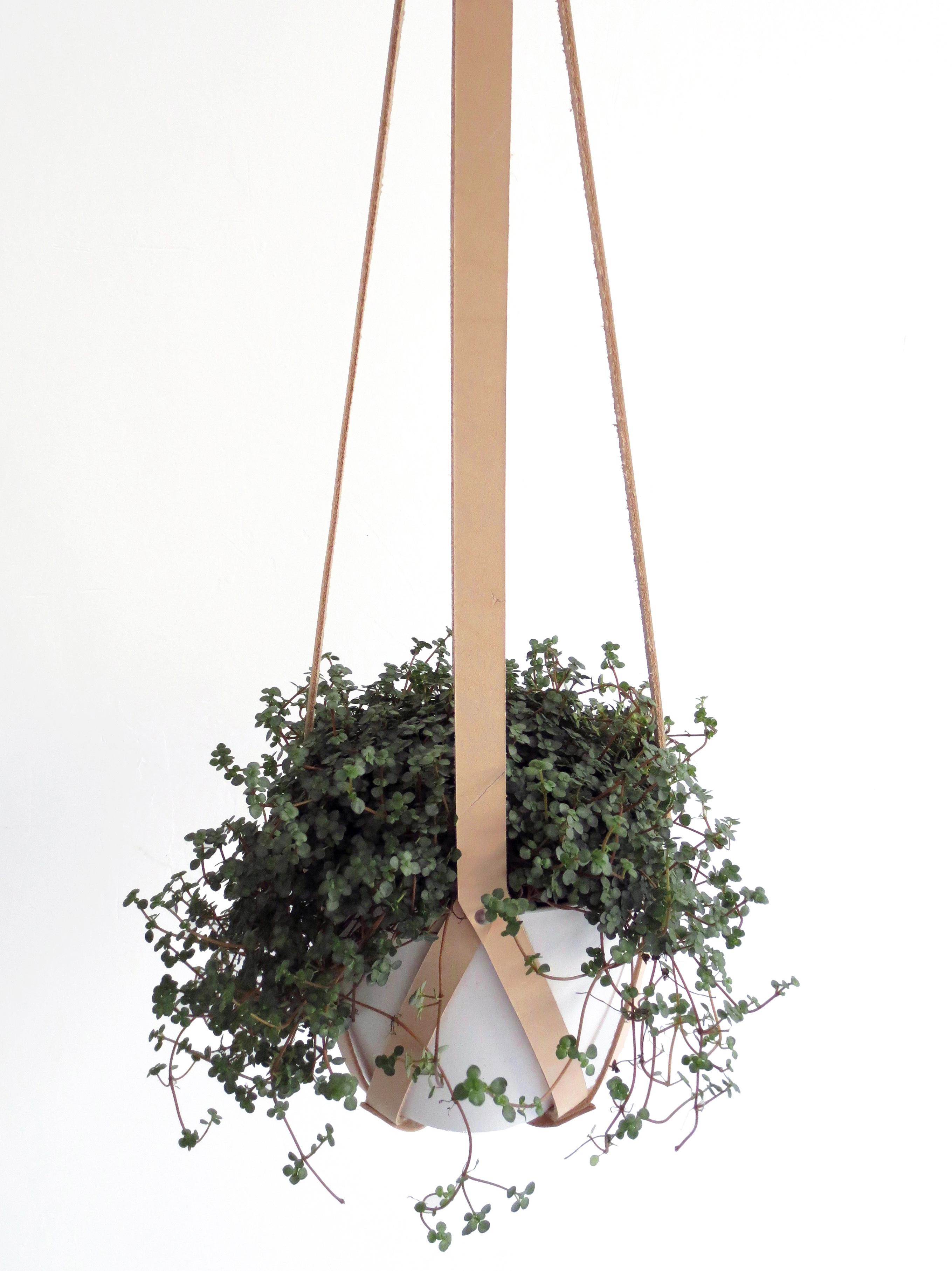 Interior accessories hanging planter